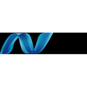 Microsof-net-logo